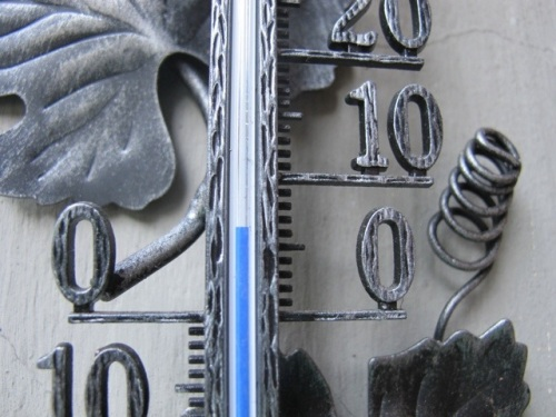20111009-082115.jpg