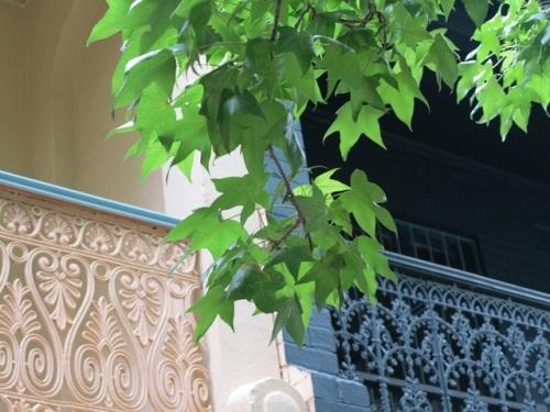 20121211-081506.jpg