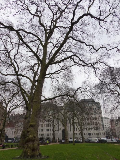 Berkley Square