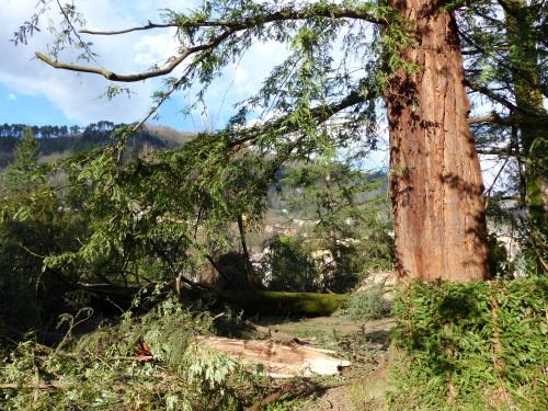 Damage in La Villa