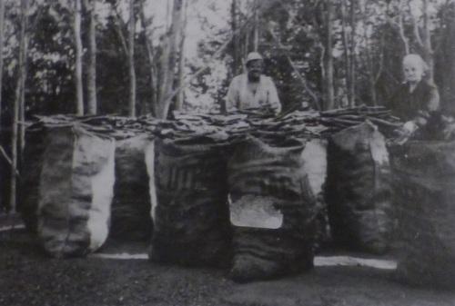 charcoal burners