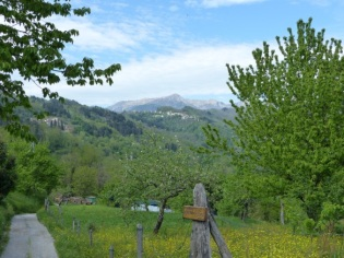 Back to Bagni di Lucca | Bagni di Lucca and Beyond