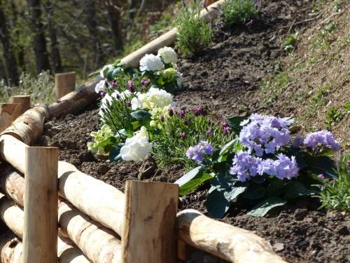 Garden at Casa Debbio