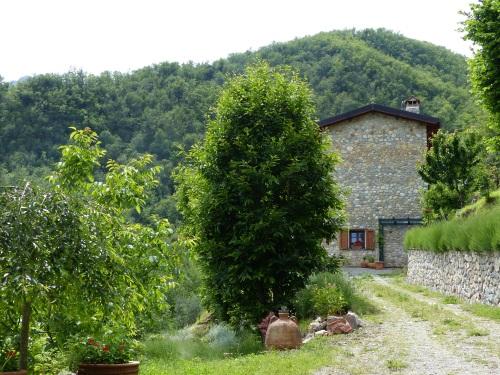 Casa Debbio