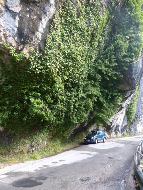 road to Casa Debbio
