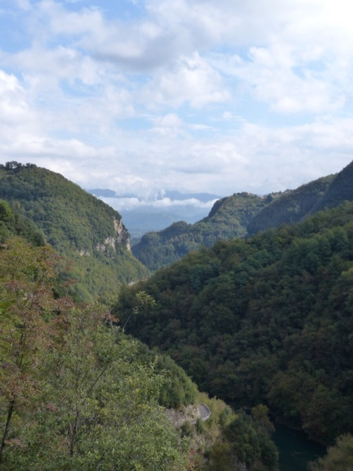 The road to Vergemoli