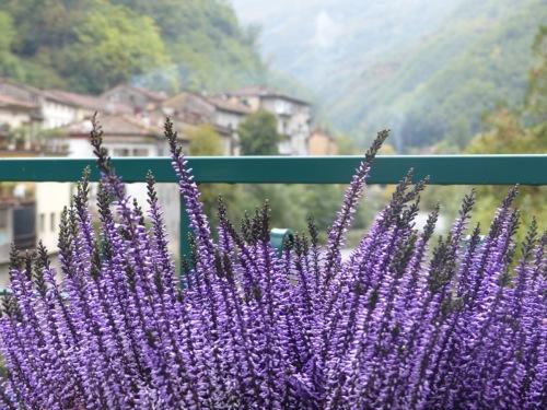 My balcony Ponte a Serraglio