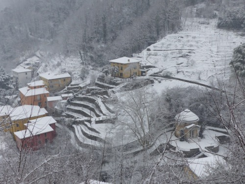 Ponte snow