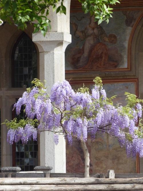 Santa Chiara cloister